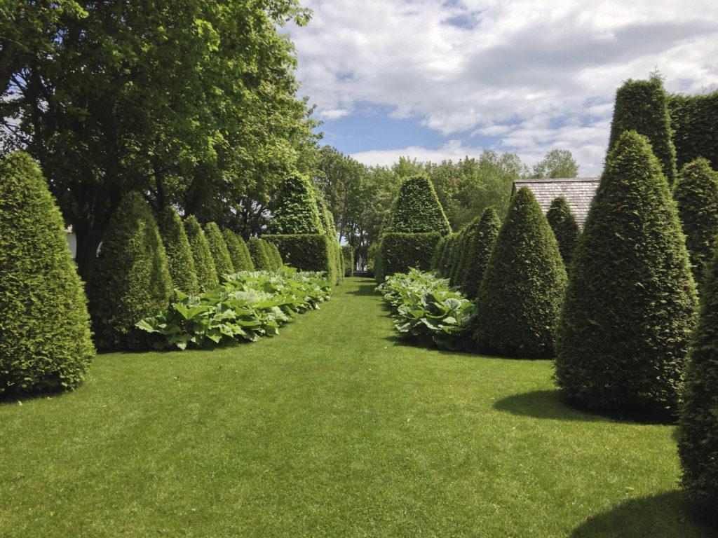 Pelouse verte impeccable et arbustes.